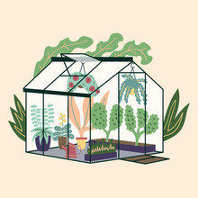 Glass Modern Greenhouse With Garden Plants. Garden Curly Ivy And Flower Pots. Winter Glass Garden, House Greenhouse With Plantation. The Room Is In Green. Gardening On The Plot. Vector