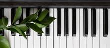 Flat Lay Closeup Piano Key On ...