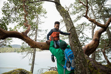 Father Lifting Son Out Of Tree...