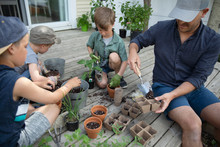 Father And Son Potting Plants ...