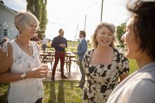 Women Friends Talking At Weddi...
