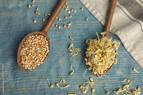 Cuadros en Lienzo  Flat lay composition with green buckwheat on blue wooden table