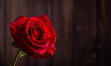 Red Rose Against Wooden Backgr...