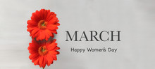 "Two Red Gerbera Flowers And ""March. Happy Women's Day"" Text In English"
