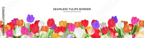 Colorful tulips flower seamless border vector decoration, 3d floral frame templa Canvas Print