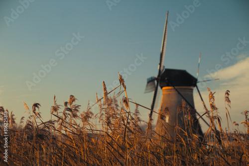 Obraz na plátně mulini di kinderdiij e grano desktop image background windmill