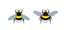 Bumblebee Logo. Isolated Bumbl...