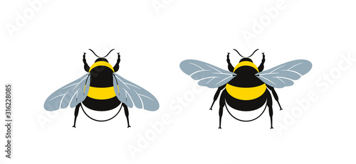 Leinwand Poster Bumblebee logo. Isolated bumblebee on white background. Wasp