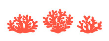 Coral Logo. Isolated Coral On ...