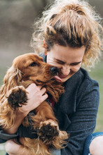 Cute Cocker Spaniel On Hands Of Attractive Happy Young Curly Woman. The Dog Licks The Owner