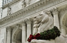 Lion Statue At New York City P...
