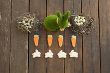 Knolling Of Grass Easter Bunny And Easter Egg Candies In Nests