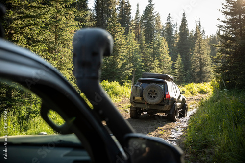 Overland adventure SUVs on remote forest road - 316246867