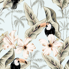 Toucans, White Hibiscus Flower...