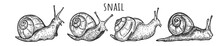 Kawaii Funny Snails Character Set