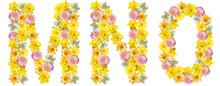 Letters Of Flowers. M, N, O. Y...