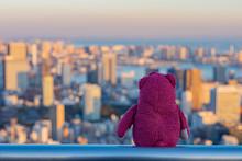 Teddy Bear Is Sitting On The R...