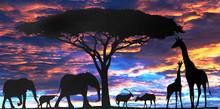 Composite African Safari Scene...