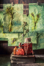 Unique Herbalist Workshop With Dried Herbs And Flowers
