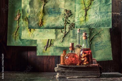 Creepy herbalist workshop with dried herbs and flowers Wallpaper Mural