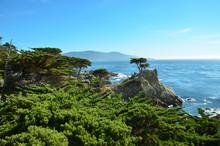 Picturesqe Monterey Peninsula ...