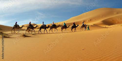 Photo Caravan of camel in the sahara desert of Morocco