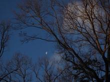 Bright Half Moon On Partly Clo...
