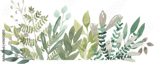 Obraz watercolor foliage greenery branch abstract floral green blue eucalyptus - fototapety do salonu