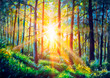 Oil painting canvas Sunset Or Sunrise In Forest Landscape. Sun Sunshine With Natural Sunlight And Sun Rays Through Woods Trees In Summer Forest. Beautiful Scenic View.