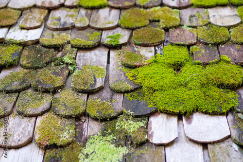 Old damaged wooden roof covered by moss