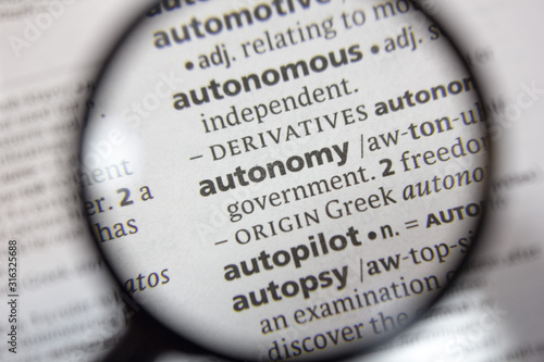 The word of phrase - autonomy - in a dictionary. Wallpaper Mural