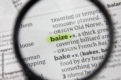 The word or phrase baize in a dictionary. Canvas Print