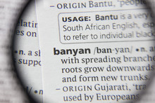 The Word Or Phrase Banyan In A...