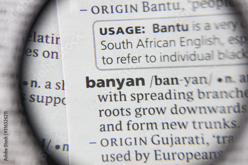 Photo The word or phrase banyan in a dictionary.