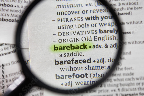 The word or phrase bareback in a dictionary. Canvas Print