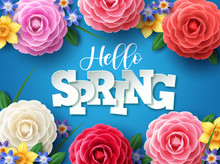 Hello Spring Vector Design. Hello Spring Greeting Text With Colorful Camellia Flowers And Leaves Elements In Blue Floral Background For Spring Season. Vector Illustration.