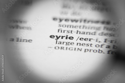 Word or phrase eyrie in a dictionary. Wallpaper Mural