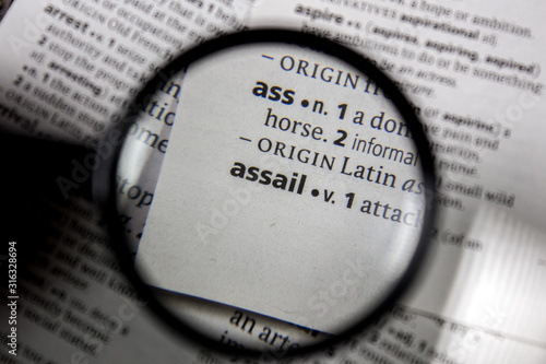 The word or phrase assail in a dictionary. Wallpaper Mural