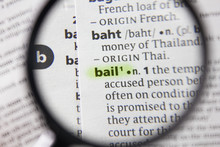 The Word Or Phrase Bail In A Dictionary.