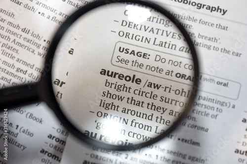 The word of phrase - aureole - in a dictionary. Canvas Print