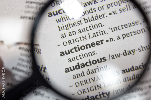 The word of phrase - auctioneer - in a dictionary. Canvas Print