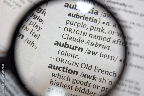 The word of phrase - auburn - in a dictionary. Wallpaper Mural