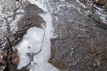 水たまり表面の氷 冬