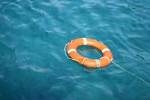 Lifeline In The Water