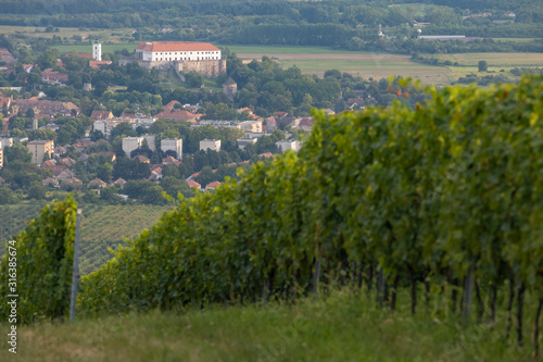 Foto Siklos castle in Villany region with vineyards, Southern Hungary