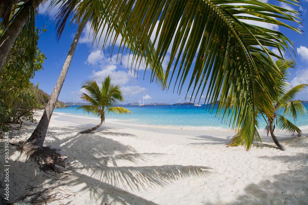 Fototapeta Salomon Beach in the Virgin Islands National Park on the Caribbean Island of St John in the US Virgin Islands
