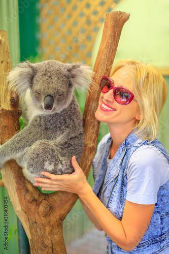 Photo Happy tourist woman touches a koala bear, Phascolarctos cinereus, on eucalyptus trunk