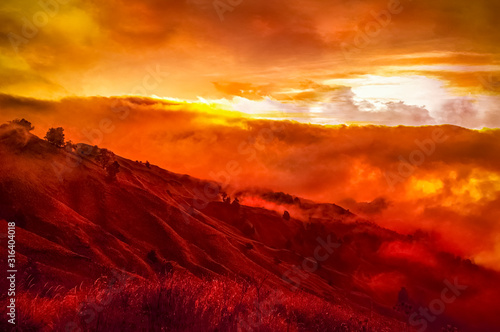 Fototapeta Hills with trees burning in wildfire obraz