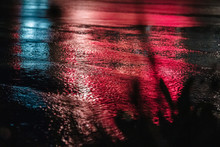 Red Reflections Of Neon Light ...