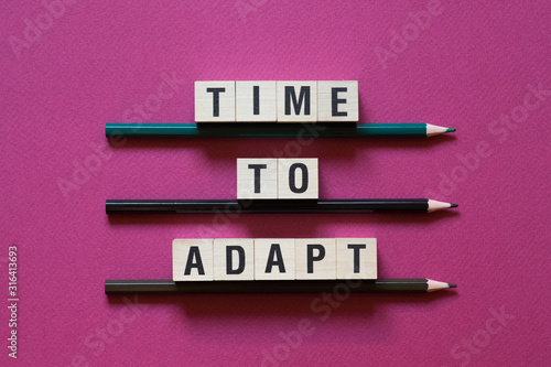 Time to Adapt word concept on cubes Wallpaper Mural
